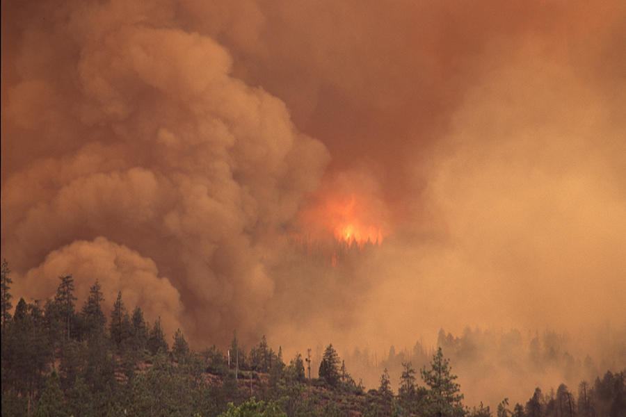 Where There S Fire There S Smoke Wildfire Smoke Affects