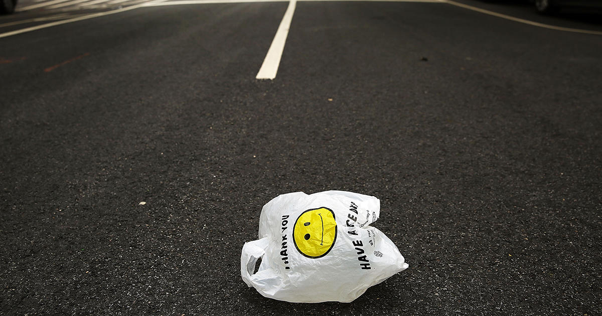 What Does the Plastic Bag Ban Mean for New Yorkers?