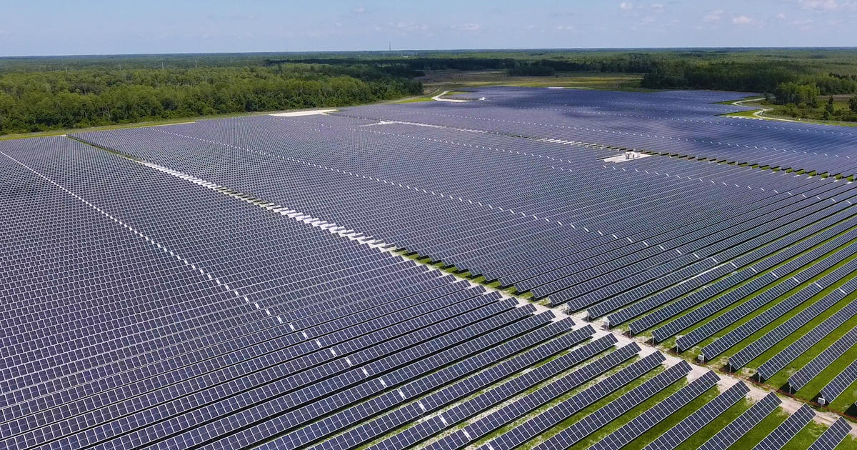 Meet the Sunshine State's New Clean Energy Darling—Community Solar