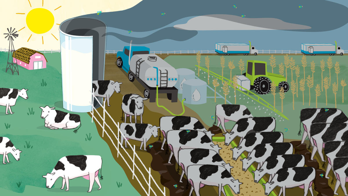 To Shrink Your Carbon Footprint Ease Up On The Dairy Nrdc