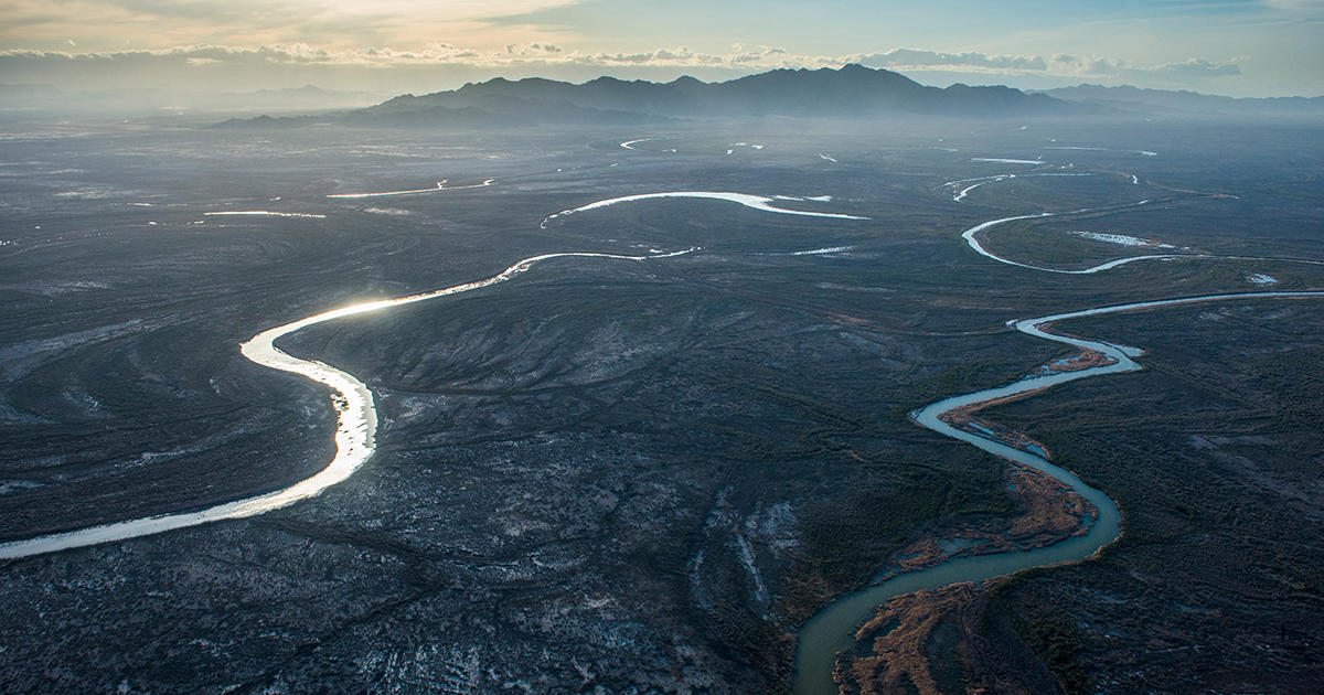 The Colorado River Delta Is Proof Of Nature S Resiliency