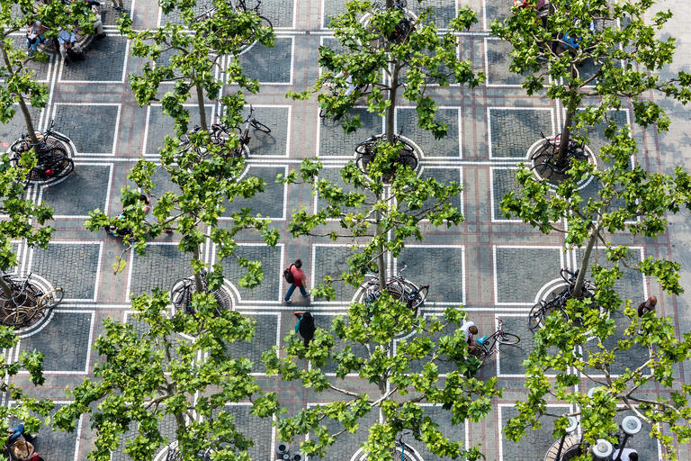 Green Infrastructure: How to Manage Water in a Sustainable