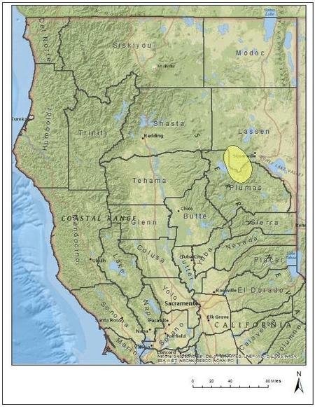 Gray Wolf Activity Map with areas in Lassen County highlighted