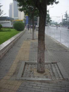 China S Low Carbon City Drive Should Pay Attention To Sidewalk